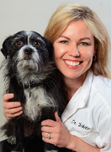 Dr. White is a regular veterinary contributor on local news and national radio programming.